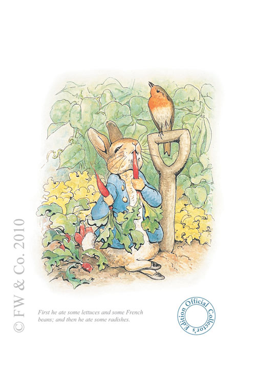 Peter Rabbit eating radishes by Beatrix Potte